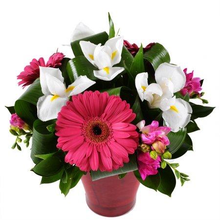 Bouquet Calliope