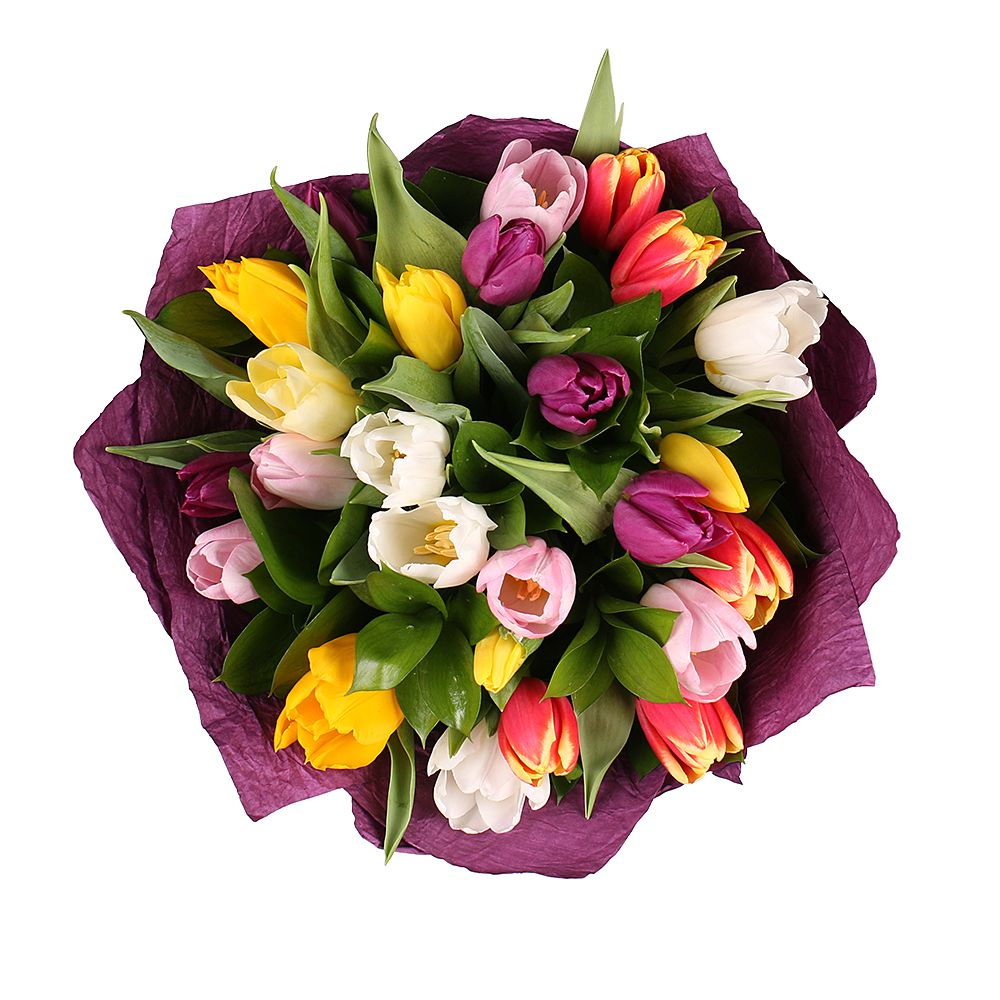 Bouquet 25 multi colored tulips
