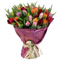 Bouquet Tulips!