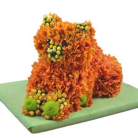 Bouquet Llohmatik