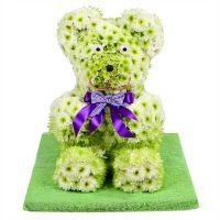 Bouquet Northern Bear