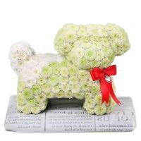 Bouquet Flower pug