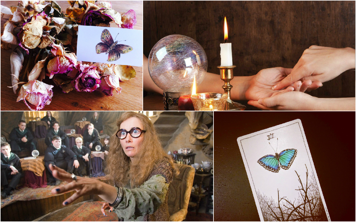 Divination by flowers