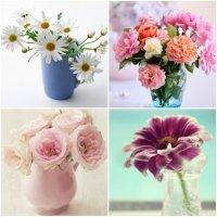 How to make flowers last longer?