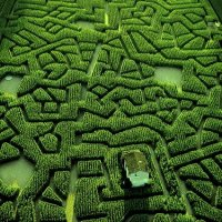 Masterpieces of Landscape Art - Natural Mazes